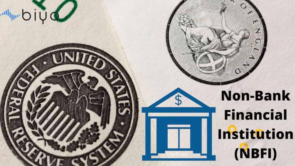 Non-Bank Financial Institution (NBFI)